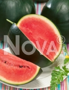 Anguria sugar baby N1704492