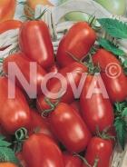 Pomodoro banan krasnyi G4701755