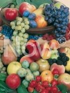 Frutti 179802