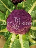 Cavolfiore violetto catanese A-2718