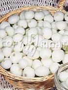 Cipolla bianca per sottaceti 14-534
