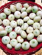 Cipolla blanca barletta 14-535