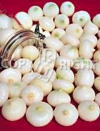 Cipolla bianca per sottaceti A-1110