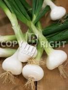Cipolla blanca pompei A-2400