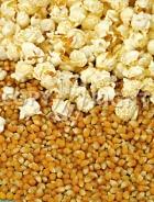 Mais da popcorn A-1063