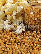 Mais da popcorn A-1064