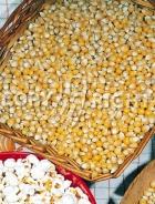 Mais da popcorn A-1066