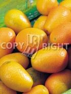Mandarino cinese AG165
