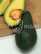 Avocado AV510