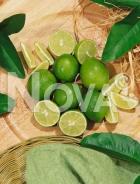 Lime N0700126