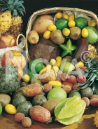 Frutta tropicale N0700459
