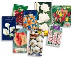 Personalise the appearance of your bulbs and bulbils.
