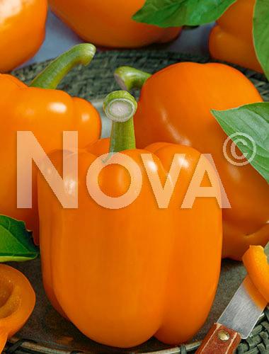 Peperone blocky orange