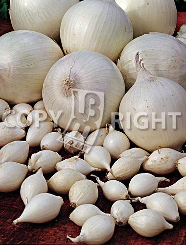 bulbilli di cipolla bianca