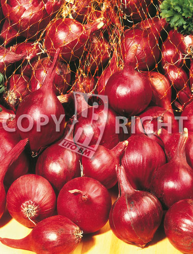 bulbilli di cipolla rossa