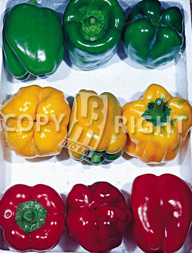 miscuglio di peperoni quadrati