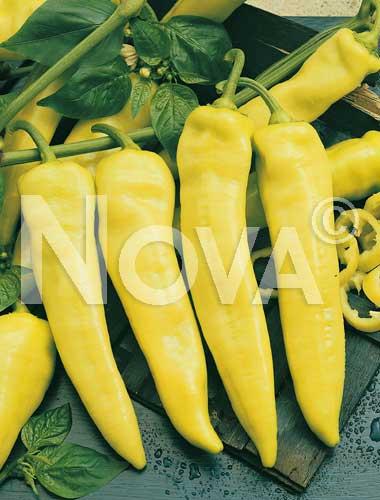 peperone banana supreme